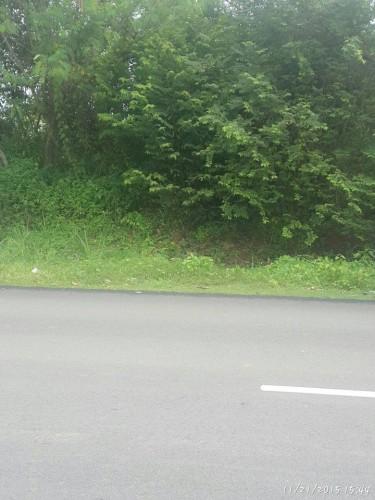Tanah Tepi jalan Utama Tepi hiway SPA nak jual