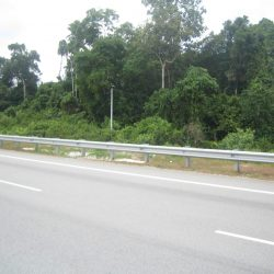 Tanah Untuk Dijual, Pekan Pahang